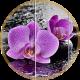 Фотопечать-цветы